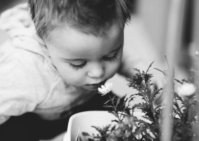 Yana Klein Photography -Leaves -0249