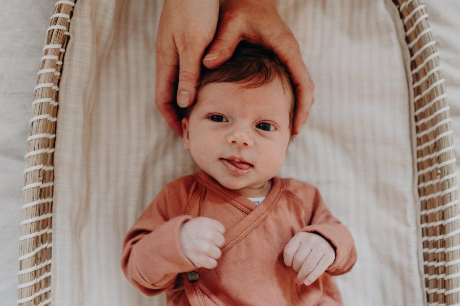 newborn baby portraits melbourne